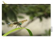 Teal Dragonfly Carry-all Pouch