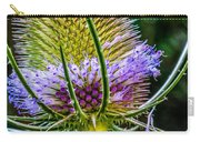Teasel 2 Carry-all Pouch
