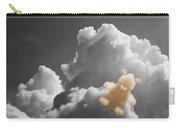 Teddy Bear Cloud Carry-all Pouch
