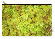 Tender Fresh Green Moss Background Texture Pattern Carry-all Pouch