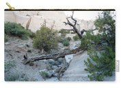 Tent Rocks 9 Carry-all Pouch
