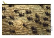 Termites On Wood With One Carrying Carry-all Pouch by Konrad Wothe