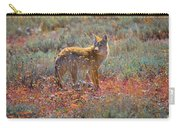 Teton Coyote Carry-all Pouch