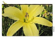 Tetrina's Daughter Daylily Carry-all Pouch