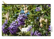 Texas Mountain Laurel Sophora Flowers And Mescal Beans Carry-all Pouch