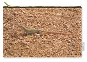 Texas Striped And Spotted Whiptail Lizard Carry-all Pouch