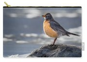 The American Robin Square Carry-all Pouch