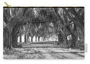 The Avenue Of Oaks Carry-all Pouch