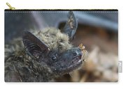 The Bat Carry-all Pouch