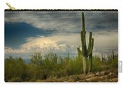 The Beauty Of The Desert Southwest  Carry-all Pouch