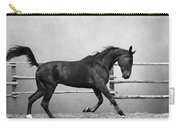 The Beauty Of The Horse Carry-all Pouch