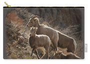 The Bighorns Carry-all Pouch