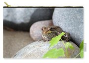The Bronze Frog Carry-all Pouch