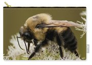 The Bumble Bee.. Carry-all Pouch
