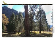 The Chapel Yosemite Carry-all Pouch