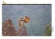 The Chipmunk Carry-all Pouch