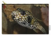 The Colorful Fish Carry-all Pouch