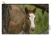 The Curious Colt  Carry-all Pouch