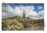 The Desert Southwest Carry-all Pouch