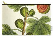 The Fig Tree Carry-all Pouch