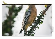 The Gila  Woodpecker Carry-all Pouch