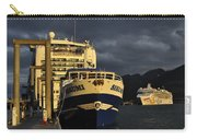 The Golden Hour Carry-all Pouch by Cathy Mahnke