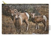 The Good Shepherd's Sheep Carry-all Pouch
