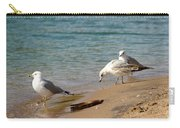 The Gulls Carry-all Pouch