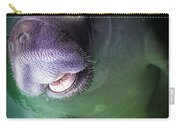 The Happy Manatee Carry-all Pouch by Karen Wiles