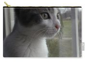 The Inquisitive Kitty Jackson Carry-all Pouch