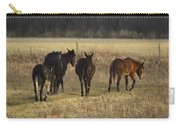 The Jackasses Carry-all Pouch