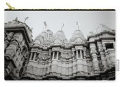 The Jain Towers Carry-all Pouch