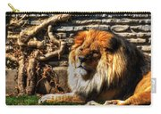 The King Lazy Boy At The Buffalo Zoo Carry-all Pouch