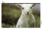 The Lamb Carry-all Pouch by Angel  Tarantella