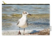 The Laughing Gull Strut Carry-all Pouch
