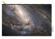 The Leo Triplet Carry-all Pouch