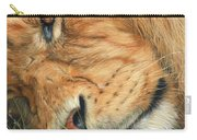 The Lion Sleeps Carry-all Pouch by David Stribbling