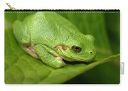 The Little Frog Carry-all Pouch