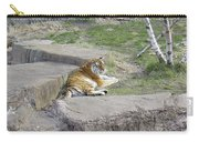 The Lounging Tiger 1 Carry-all Pouch