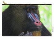 The Mandrill Carry-all Pouch
