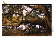 The Old Tree At The Ashley River In Charleston Carry-all Pouch by Susanne Van Hulst