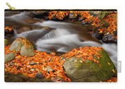 The Orange Stream Carry-all Pouch