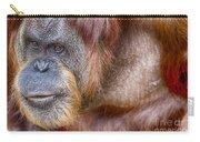 The Orangutan Album  Carry-all Pouch