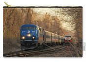 The Passing Siding Carry-all Pouch