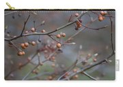 The Peaceful Fruit Of Nature Carry-all Pouch