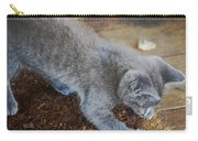 The Playful Kitten Carry-all Pouch