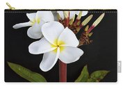 The Plumeria Carry-all Pouch