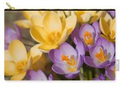 The Purple And Yellow Crocus Flowers Carry-all Pouch