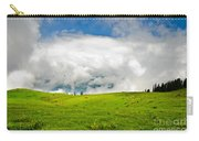The Real Windows Desktop Carry-all Pouch