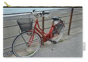 The Red Bicycle Carry-all Pouch